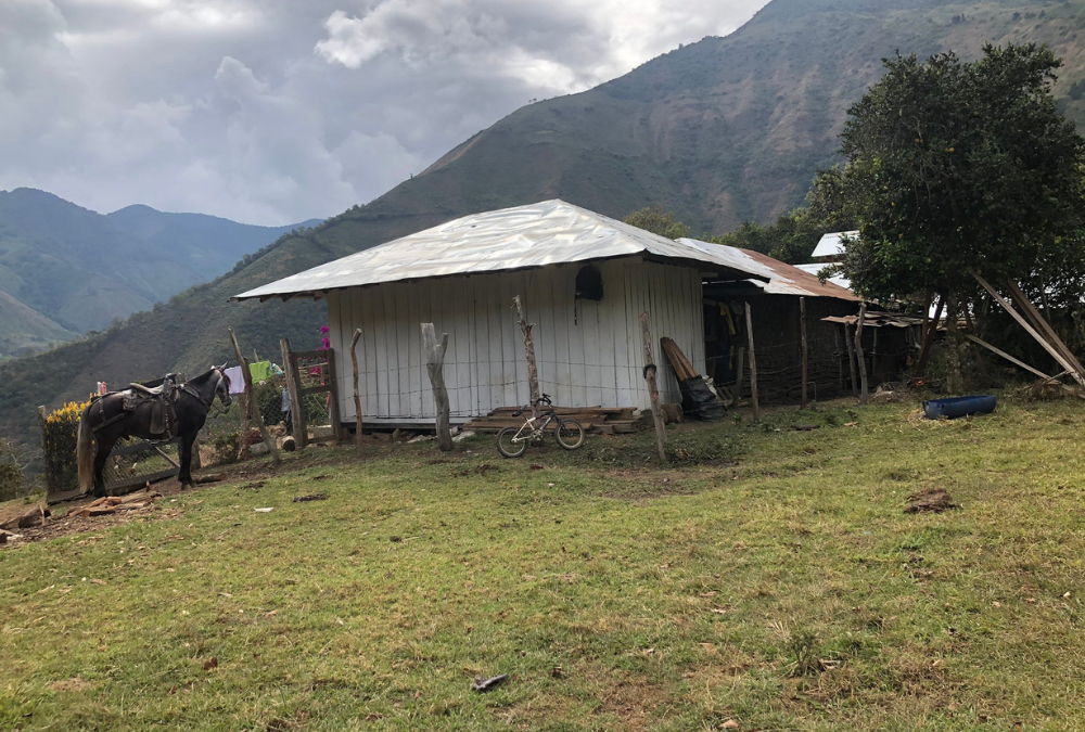 Boletín #05: Ituango: Una población desamparada